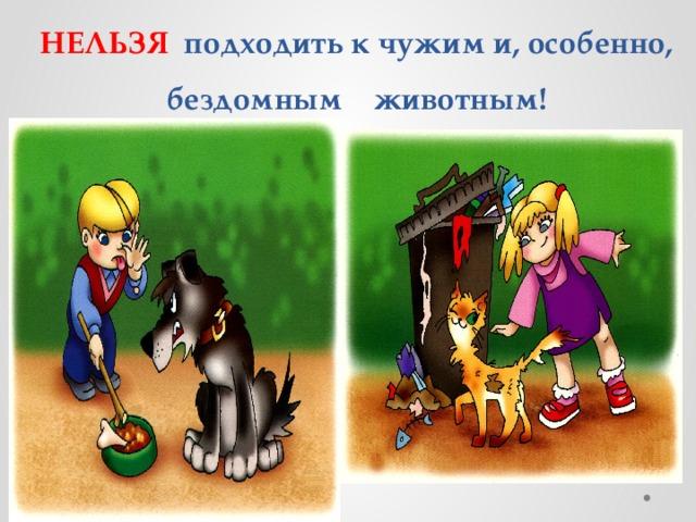 НЕЛЬЗЯ подходить к чужим и, особенно, бездомным животным!