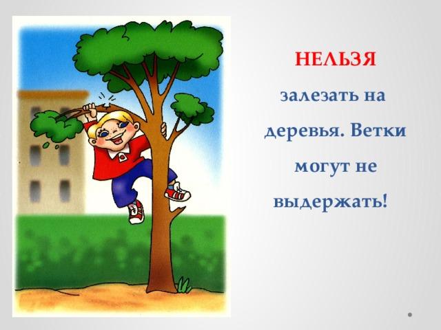 НЕЛЬЗЯ залезать на деревья. Ветки могут не выдержать!