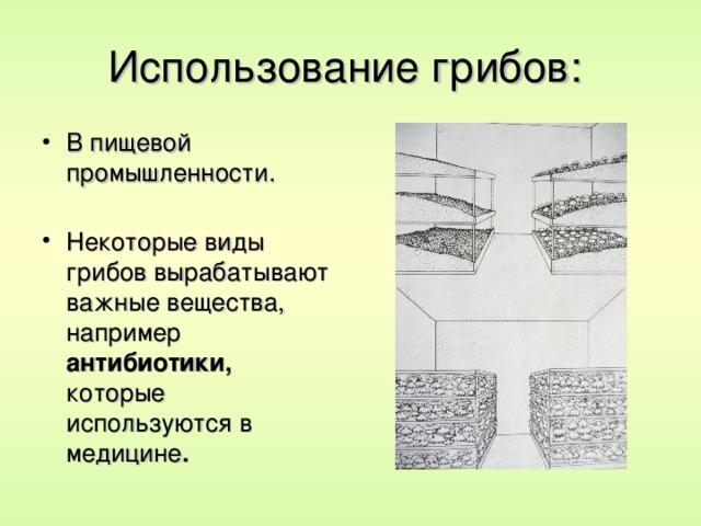 Использование грибов: