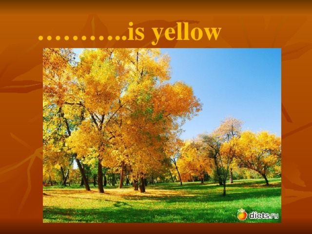 ……… ..is yellow