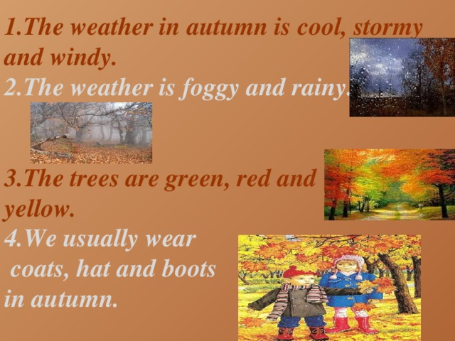1.The weather in autumn is cool, stormy and windy. 2.The weather is foggy and rainy.   3.The trees are green, red and yellow. 4.We usually wear  coats, hat and boots in autumn.