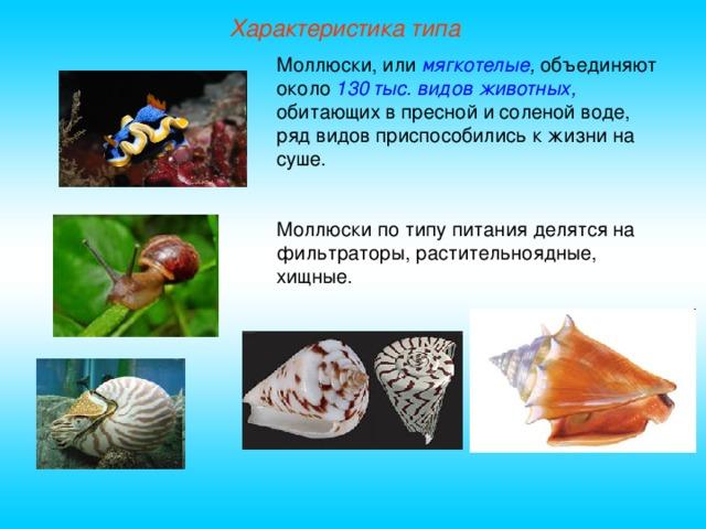 Характеристика типа Моллюски, или мягкотелые , объединяют около 130 тыс. видов животных, обитающих в пресной и соленой воде, ряд видов приспособились к жизни на суше. Моллюски по типу питания делятся на фильтраторы, растительноядные, хищные.
