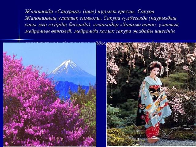 Жапонияда «Сакураға» (шие)-құрмет ерекше. Сакура Жапонияның ұлттық символы. Сакура гүлдегенде (наурыздың соңы мен сәуірдің басында) жапондар «Ханами пати» ұлттық мейрамын өткізеді. мейрамда халық сакура жабайы шиесінің ашық қызыл гүлін тамашалайды, рухани ләззәт алады.