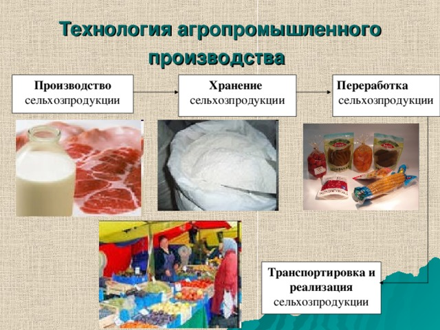 Технология агропромышленного производства  Производство сельхозпродукции Хранение сельхозпродукции Переработка сельхозпродукции Транспортировка и реализация сельхозпродукции