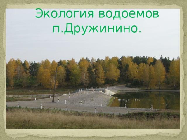 Экология водоемов п.Дружинино.