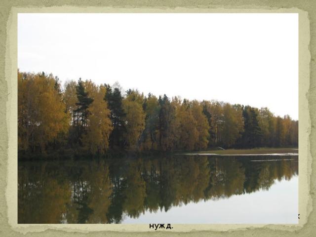 На территории имеются искусственные водоемы-пруды: Дружининский, Первомайский. Дружининский пруд был построен для нужд железной дороги, Первомайский пруд для нужд сельского хозяйства (мелиорации). Они также служат источниками воды для хозяйственных и бытовых нужд.