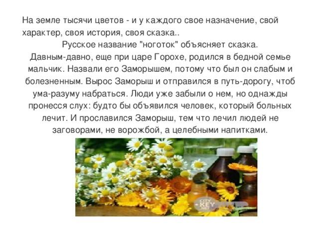 На земле тысячи цветов - и у каждого свое назначение, свой характер, своя история, своя сказка.. Русское название