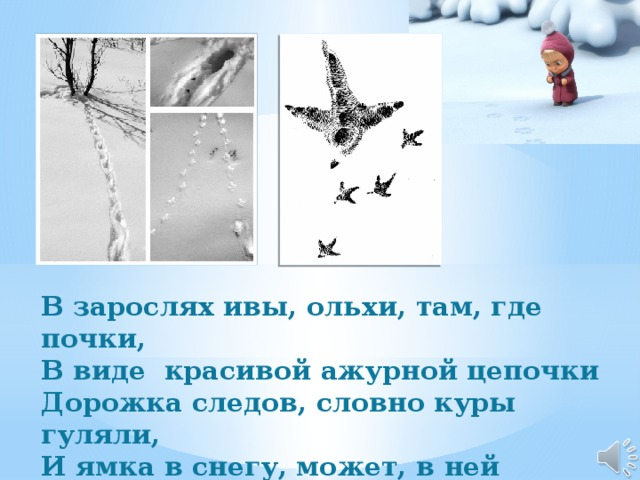 В зарослях ивы, ольхи, там, где почки, В виде красивой ажурной цепочки Дорожка следов, словно куры гуляли, И ямка в снегу, может, в ней ночевали? Любому понятна такая загадка: