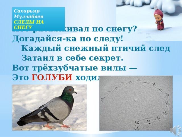 Сахирьяр Муллабаев СЛЕДЫ НА СНЕГУ Кто расхаживал по снегу?  Догадайся-ка по следу!   Каждый снежный птичий след   Затаил в себе секрет.  Вот трёхзубчатые вилы —  Это ГОЛУБИ ходили.