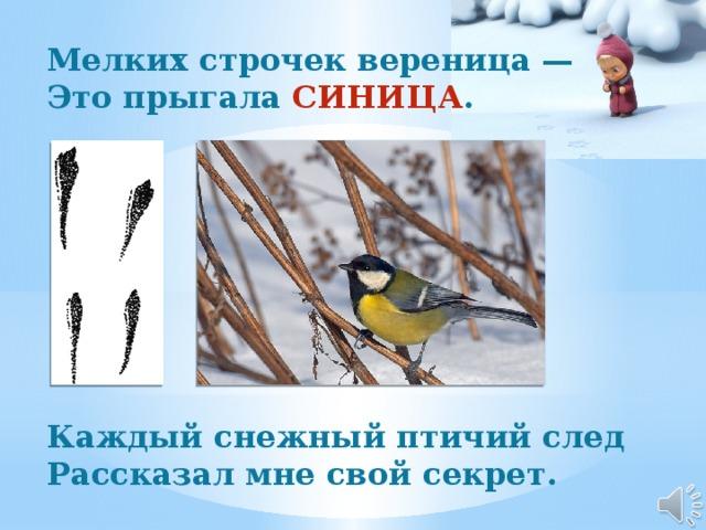 Мелких строчек вереница —  Это прыгала СИНИЦА .          Каждый снежный птичий след  Рассказал мне свой секрет.