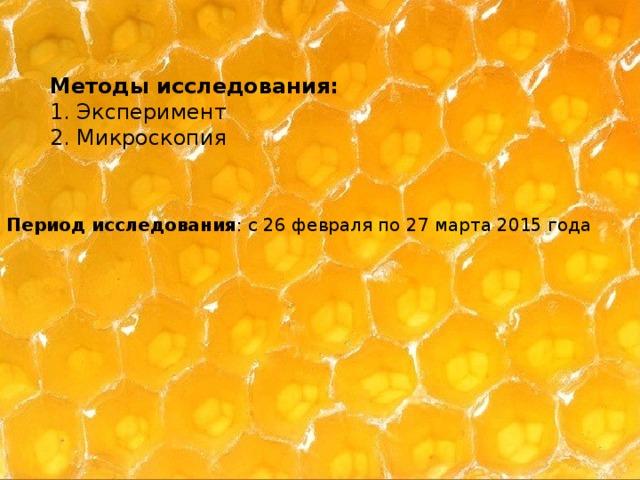 Методы исследования: 1. Эксперимент 2. Микроскопия Период исследования : с 26 февраля по 27 марта 2015 года