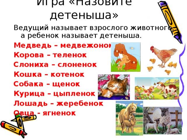 Игра «Назовите детеныша» Ведущий называет взрослого животного, а ребенок называет детеныша. Медведь – медвежонок Корова – теленок Слониха – слоненок Кошка – котенок Собака – щенок Курица – цыпленок Лошадь – жеребенок Овца - ягненок