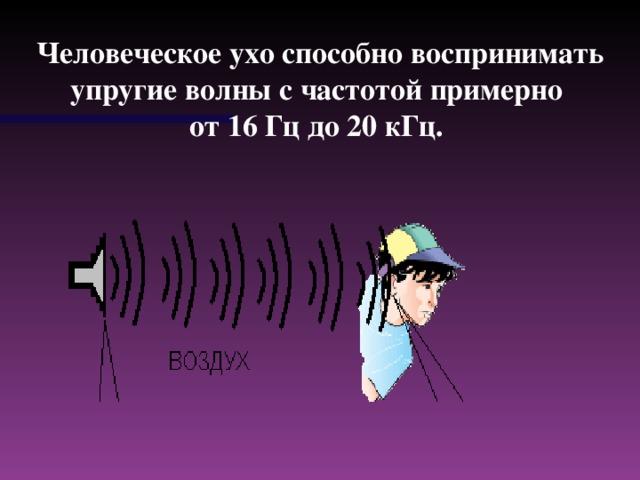 Человеческое ухо способно воспринимать упругие волны с частотой примерно от 1 6 Гц до 2 0 кГц.