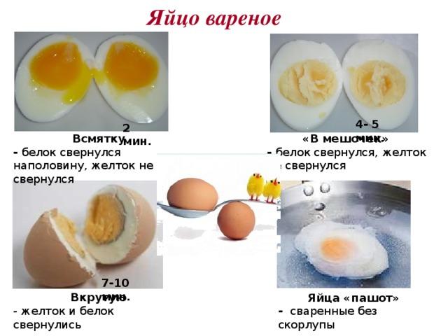 Яйцо вареное 4- 5 мин. 2 мин. Всмятку «В мешочек» - белок свернулся наполовину, желток не свернулся - белок свернулся, желток не свернулся 7-10 мин. Вкрутую - желток и белок свернулись Яйца «пашот» - сваренные без скорлупы
