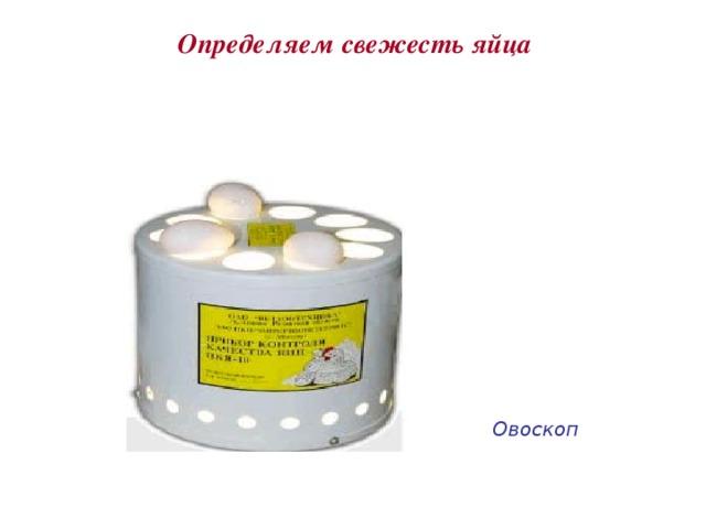 Определяем свежесть яйца Овоскоп