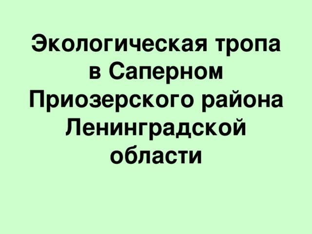Экологическая тропа в Саперном  Приозерского района Ленинградской области