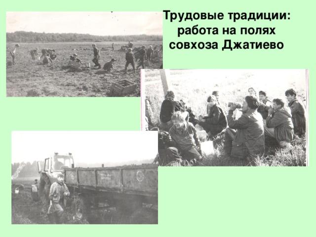 Трудовые традиции: работа на полях совхоза Джатиево