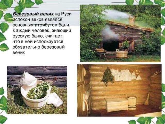 Березовый веник на Руси испокон веков являлся основным атрибутом бани. Каждый человек, знающий русскую баню, считает, что в ней используется обязательно березовый веник