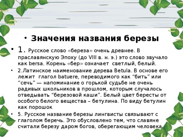 """Значения названия березы 1. Русское слово «береза» очень древнее. В праславянскую Эпоху (до VIII в. н. э.) это слово звучало как bersa. Корень «бер» означает светлый, белый. 2.Латинское наименование дерева Betula. В основе его лежит глагол batuere, переводимого как """"бить"""" или """"сечь"""" — напоминание о горькой судьбе не очень радивых школьников в прошлом, которым случалось отведывать """"березовой каши"""". Белый цвет бересты от особого белого вещества – бетулина. По виду бетулин как порошок 5. Русское название березы лингвисты связывают с глаголом беречь. Это обусловлено тем, что славяне считали березу даром богов, оберегающим человека."""
