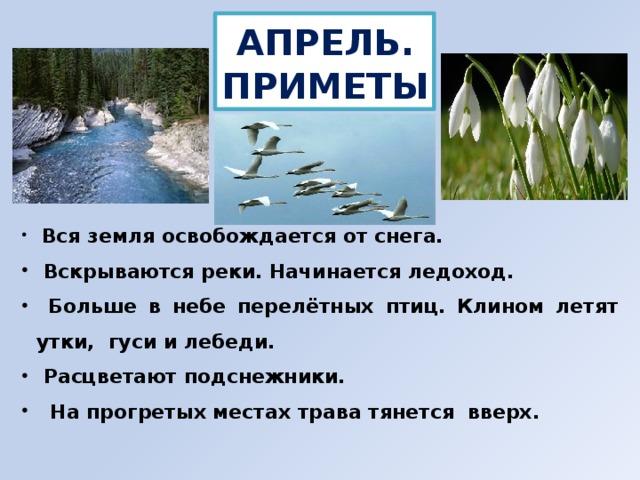 АПРЕЛЬ. ПРИМЕТЫ