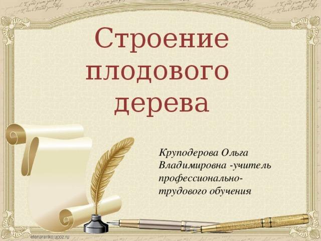 Строение плодового дерева Круподерова Ольга Владимировна -учитель профессионально-трудового обучения