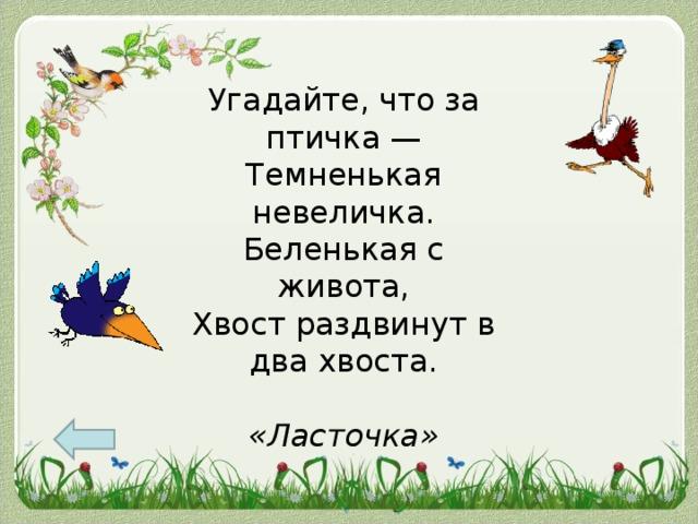 Угадайте, что за птичка —  Темненькая невеличка.  Беленькая с живота,  Хвост раздвинут в два хвоста.   «Ласточка»