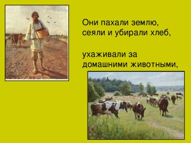 Они пахали землю, сеяли и убирали хлеб, ухаживали за домашними животными,