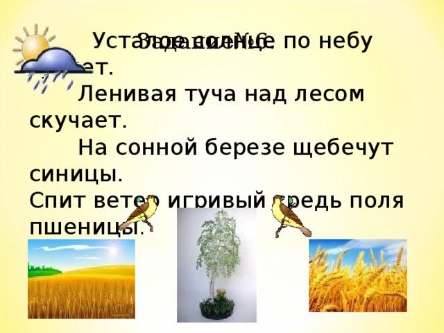 Усталое солнце по небу гуляет.  Ленивая туча над лесом скучает.  На сонной березе щебечут синицы. Спит ветер игривый средь поля пшеницы .  Задание№6.