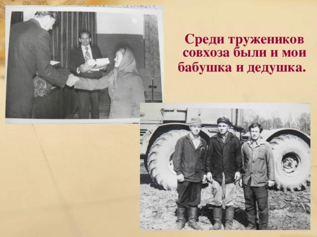 Среди тружеников совхоза были и мои бабушка и дедушка.