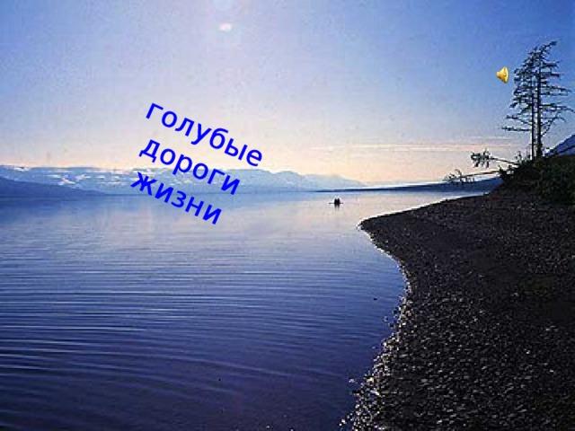 голубые дороги жизни .