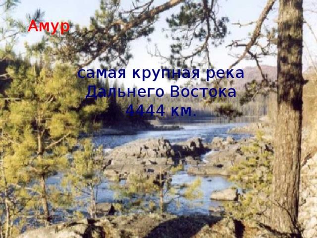 Амур самая крупная река Дальнего Востока 4444 км.