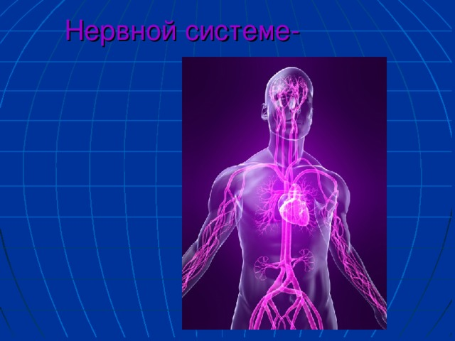 Нервной системе-