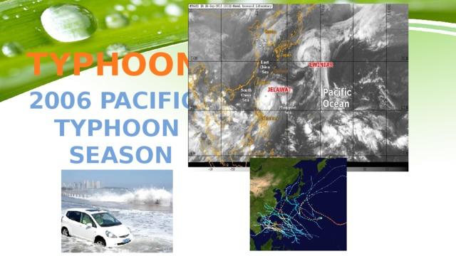 TYPHOON 2006 Pacific Typhoon  season