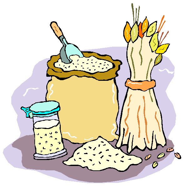 Как выращивают хлеб для детей подготовительной группы?