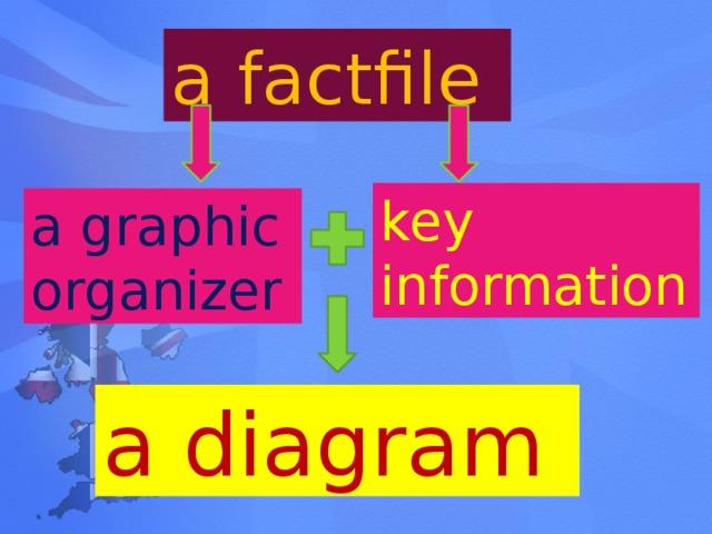a factfile key information  a graphic organizer a diagram