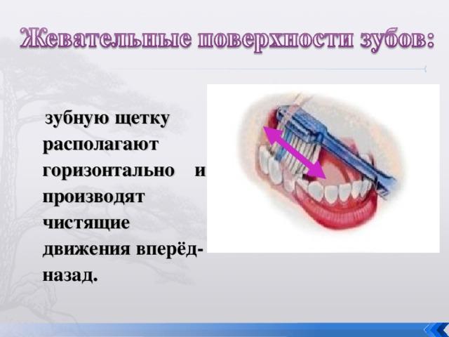 зубную щетку располагают горизонтально и производят чистящие движения вперёд-назад .
