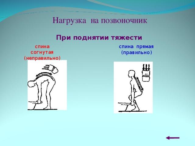 Нагрузка на позвоночник При поднятии тяжести спина согнутая (неправильно) спина прямая (правильно)