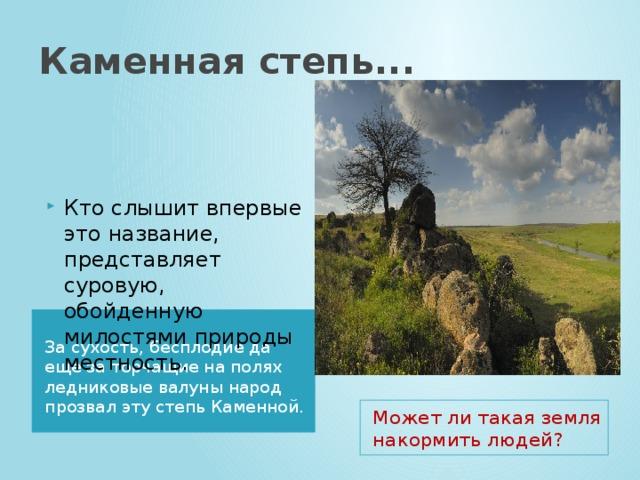 Каменная степь... Кто слышит впервые это название, представляет суровую, обойденную милостями природы местность. За сухость, бесплодие да еще за торчащие на полях ледниковые валуны народ прозвал эту степь Каменной. Может ли такая земля накормить людей?