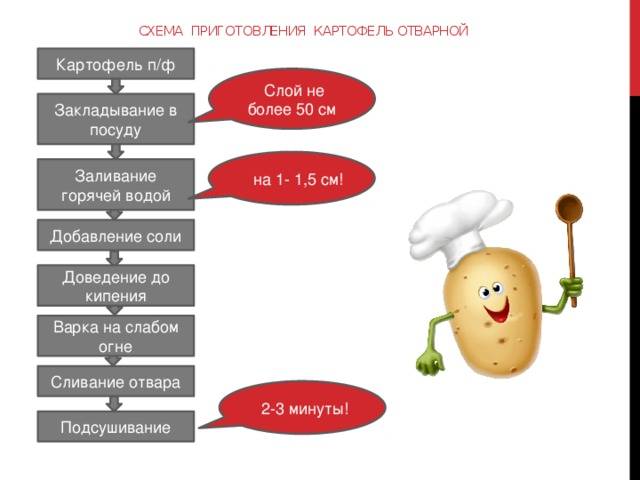 Схема приготовления картофель отварной Картофель п/ф  Слой не более 50 см Закладывание в посуду  на 1- 1,5 см! Заливание горячей водой Добавление соли Доведение до кипения Варка на слабом огне Сливание отвара  2-3 минуты! Подсушивание 3