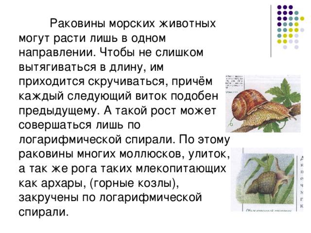 Раковины морских животных могут расти лишь в одном направлении. Чтобы не слишком вытягиваться в длину, им приходится скручиваться, причём каждый следующий виток подобен предыдущему. А такой рост может совершаться лишь по логарифмической спирали. По этому раковины многих моллюсков, улиток, а так же рога таких млекопитающих как архары, (горные козлы), закручены по логарифмической спирали.