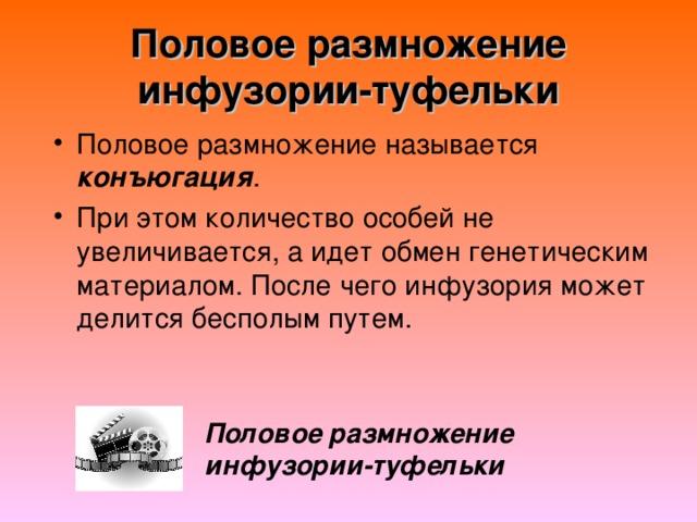 Половое размножение инфузории-туфельки конъюгация Половое размножение инфузории-туфельки