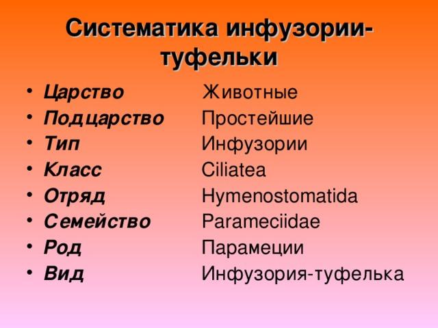 Систематика инфузории-туфельки