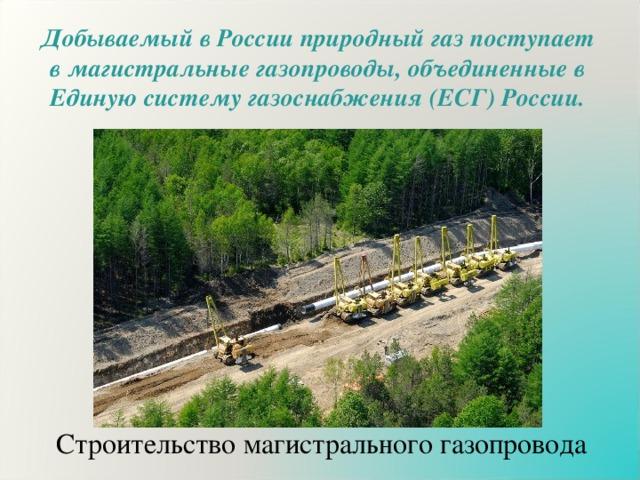Добываемый в России природный газ поступает в магистральные газопроводы, объединенные в Единую систему газоснабжения (ЕСГ) России. Строительство магистрального газопровода