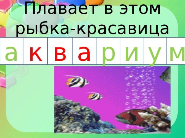 Плавает в этом рыбка-красавица а к в р а и у м