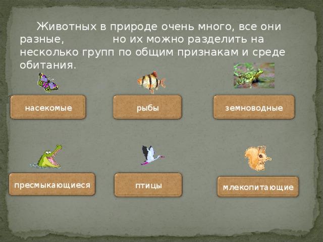 Животных в природе очень много, все они разные, но их можно разделить на несколько групп по общим признакам и среде обитания. рыбы насекомые земноводные пресмыкающиеся птицы млекопитающие