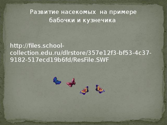 Развитие насекомых на примере бабочки и кузнечика http://files.school-collection.edu.ru/dlrstore/357e12f3-bf53-4c37-9182-517ecd19b6fd/ResFile.SWF