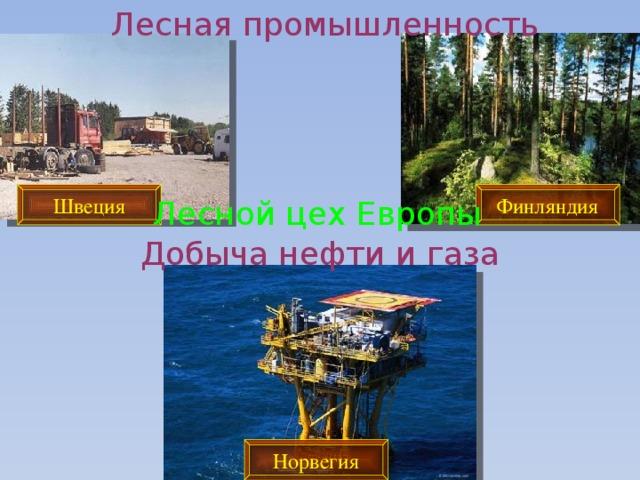 Лесная промышленность Швеция Финляндия Лесной цех Европы Добыча нефти и газа Норвегия