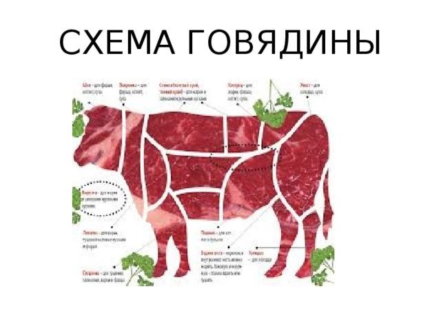 Части мяса на немецком в картинках