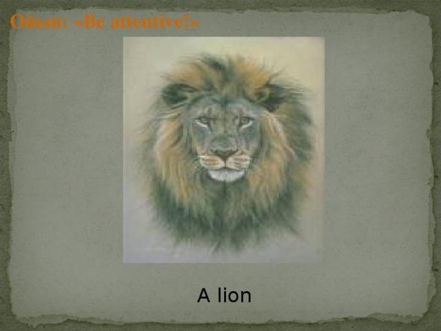 Ойын: « Be attentive !» A lion