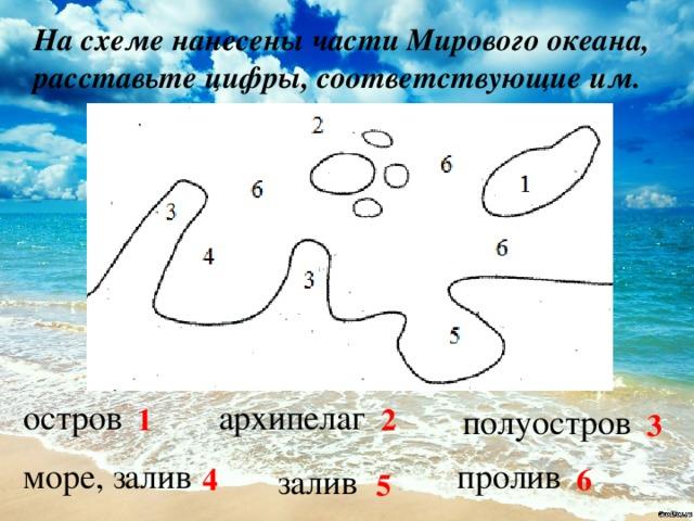 На схеме нанесены части Мирового океана, расставьте цифры, соответствующие им.  остров архипелаг полуостров 1 2 3 море, залив пролив залив 4 6 5
